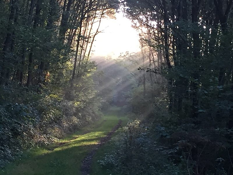 Das Licht ist das, was die Seele sucht (Foto: Hans-Joachim Schneider)