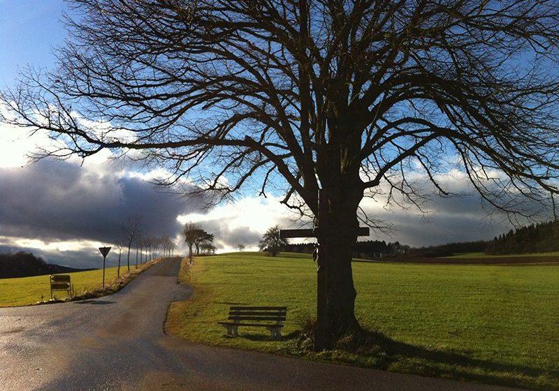 An dieser Stelle steht ein Foto mit dem Titel: Nach einem regnerischen Vormittag überrascht uns am Ende der Tour der HImmel über Holzmühlheim mit wunderbaren Lichtstimmungen (Foto: H.-J. Schneider)