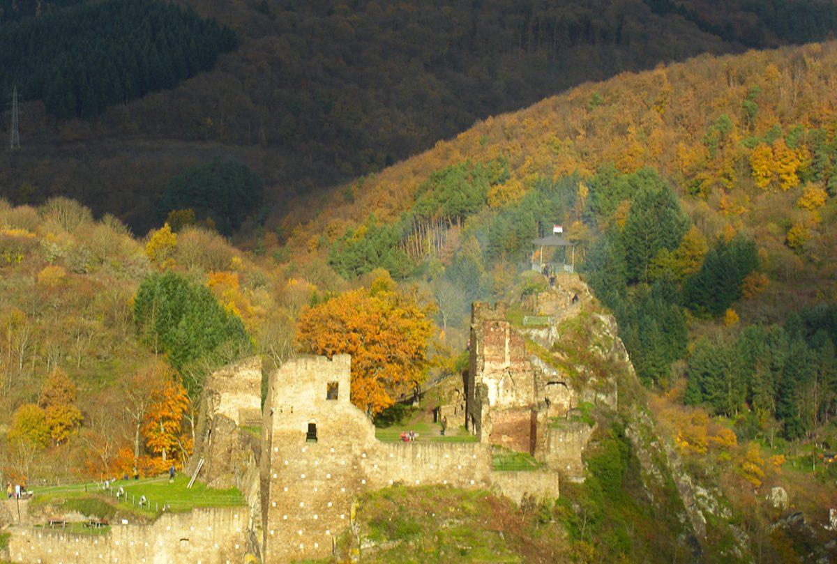 Das Novemberlicht verleiht der Szenerie einen magischen Glanz