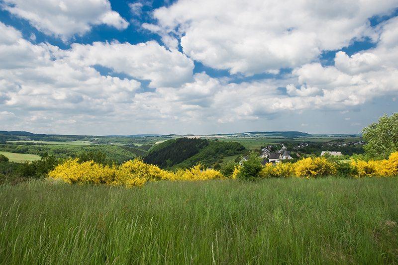 Hier steht ein Bild mit dem Title: Der Hunsrück zeigt sich von seiner schönsten Seite (Foto: Projektbüro Saar-Hunsrück-Steig)