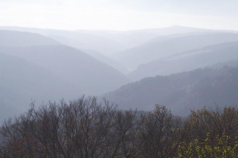 Hier steht ein Blld mit dem Titel: Panorama vom Steinerberg, Variation (Foto: Hans-Joachim Schneider)