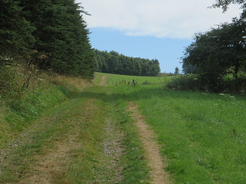 Hier steht ein Bild mit dem Titel: Aus dem Tal wieder rauf auf die Höhe (ich verkneif mir das jetz mal mit: Oh, du schöner Westerwald ... (Foto: Hans-Joachim Schneider)