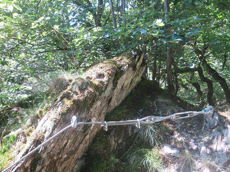 Hier steht ein Foto mit dem Titel: An gefährdeten Wegstellen ist der Abstieg mit Stahlseilen gesichert (Foto: Hans-Joachim Schneider)