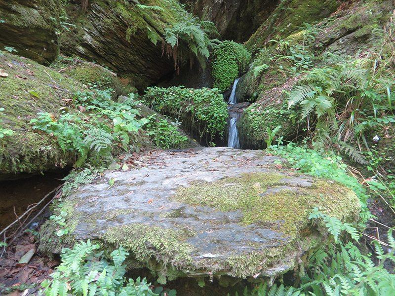 Hier steht ein Bild mit dem Titel: Zauberhafter namenloser Wasserfall (Foto: Hans-Joachim Schneider)