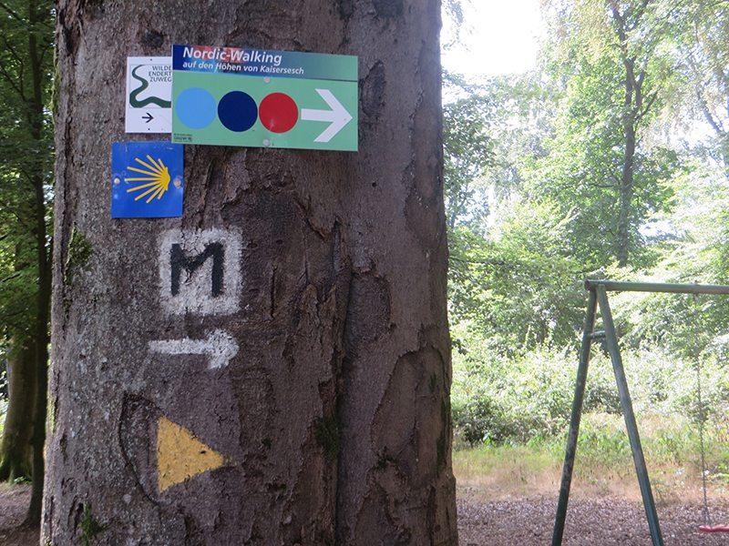 Hier steht ein Bild mit dem Titel: Typischer Naherholungswald ... und viele, viele Wegzeichen (Foto: Hans-Joachim Schneider)