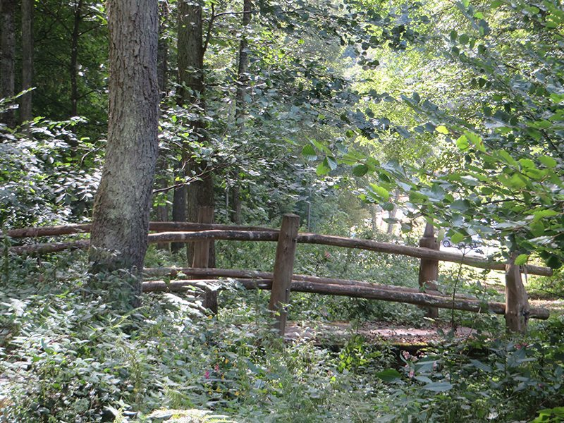 An dieser Stelle steht ein Bild mit dem Titel: Die kleine zauberhafte Holzbrücke, die mich zum Parkplatz bringt (Foto: Hans-Joachim Schneider)
