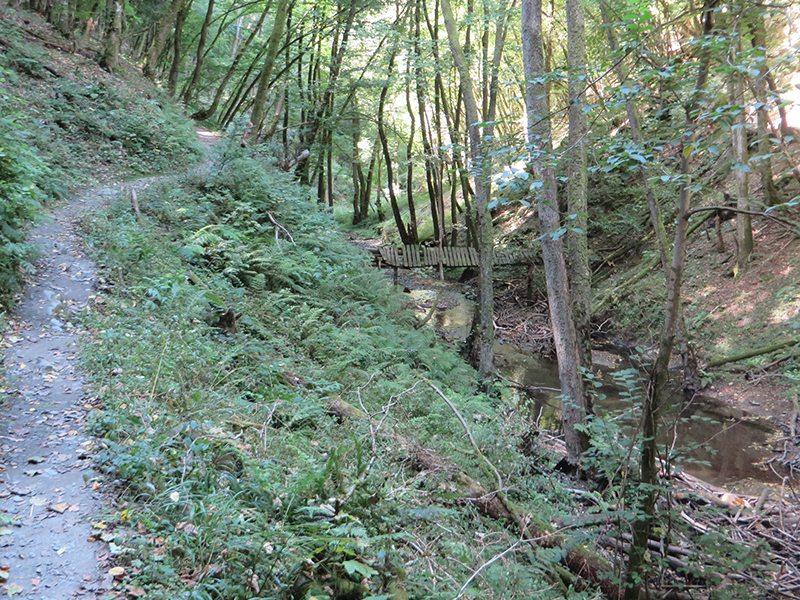 Hier steht ein Bild mit dem Titel: Mal auf schmalem Steig, mal auf breiterem Weg, nur nie langweilig ist die Tour durch das Endert-Tal (Foto: Hans-Joachim Schneider)