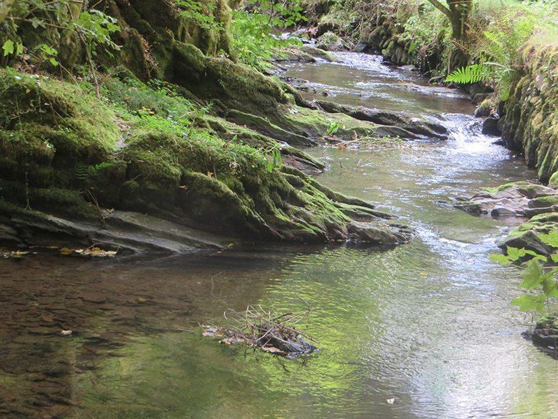 Hier steht ein Bild mit dem Ttiel: Ruhig fließt die Wilde Endet dahin; sie kann aber auch anders (Foto: Hans-Joachim Schneider)