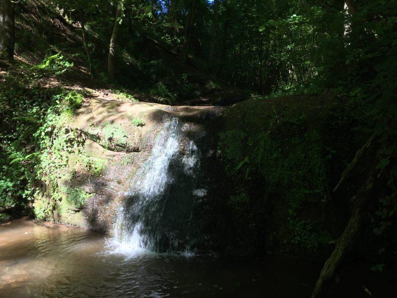 Der Butzerbach hat eine ganze Reihe von Wasserfällen vorzuweisen. In den darunter liegenden Gumpen sammelt sich das Wasser.