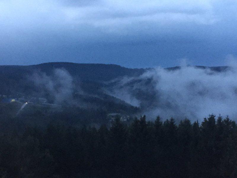 Thüringer Wald, Oberhof am Rennsteig, Nadelwald, Dunkelheit, Nebel, Horizont.