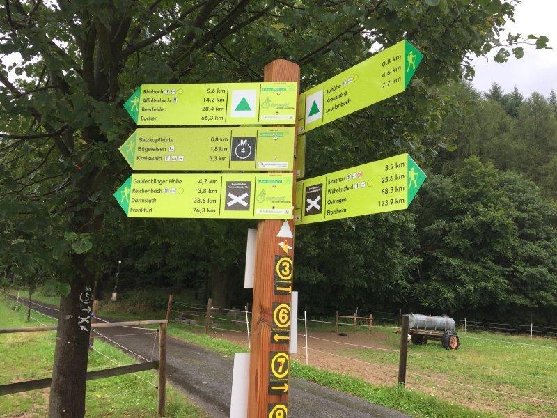 Wegweiser, Megamarsch-Strecke, Wiese, Wald, Regen